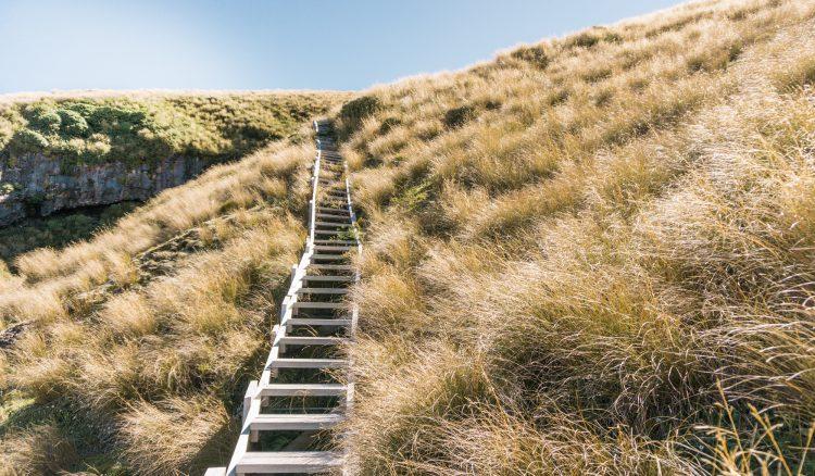Treppen zu Fanthams Peak - Mount Taranaki, Neuseeland | © Boardshortslife