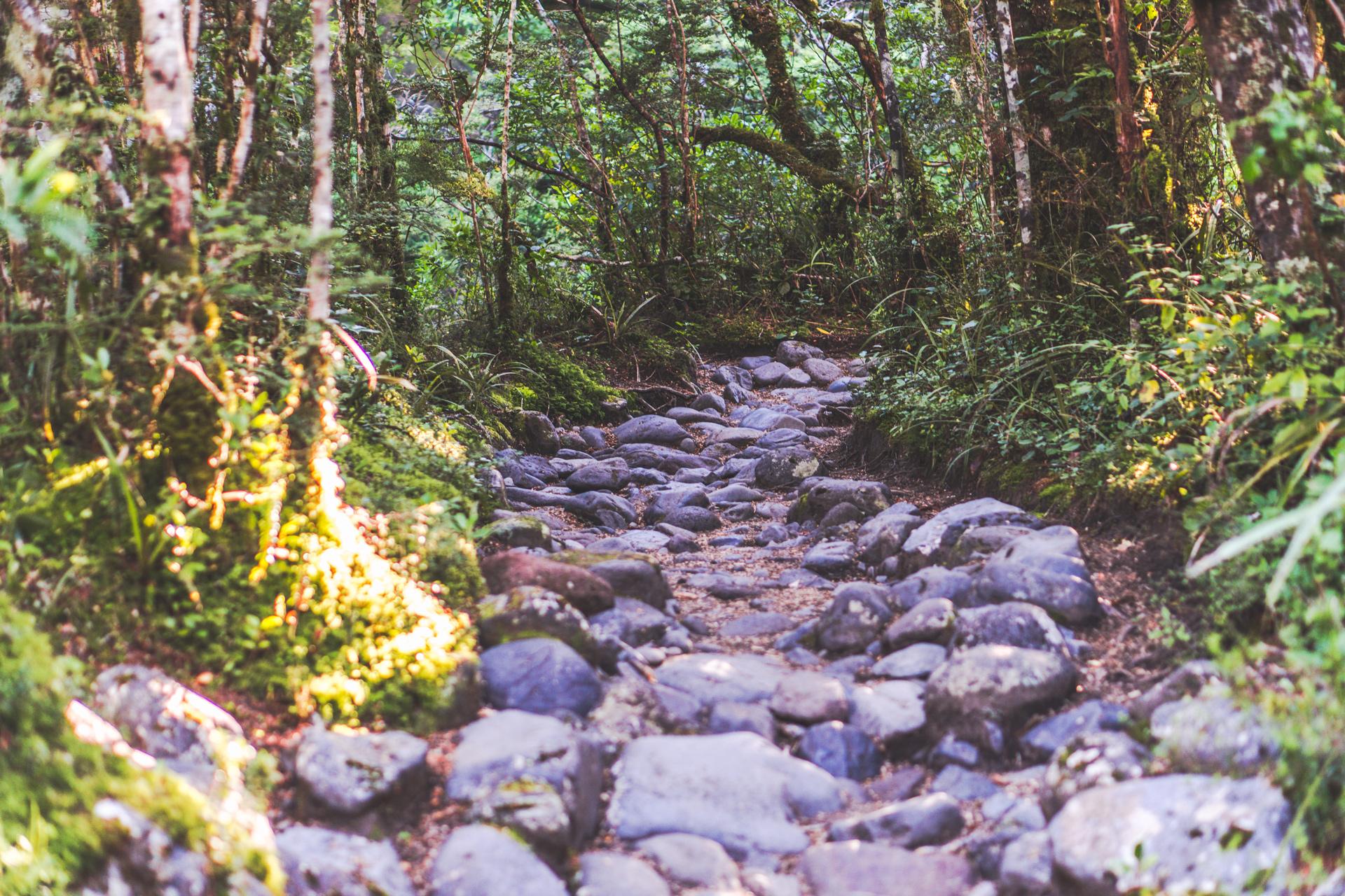 Taranaki Falls Wanderweg