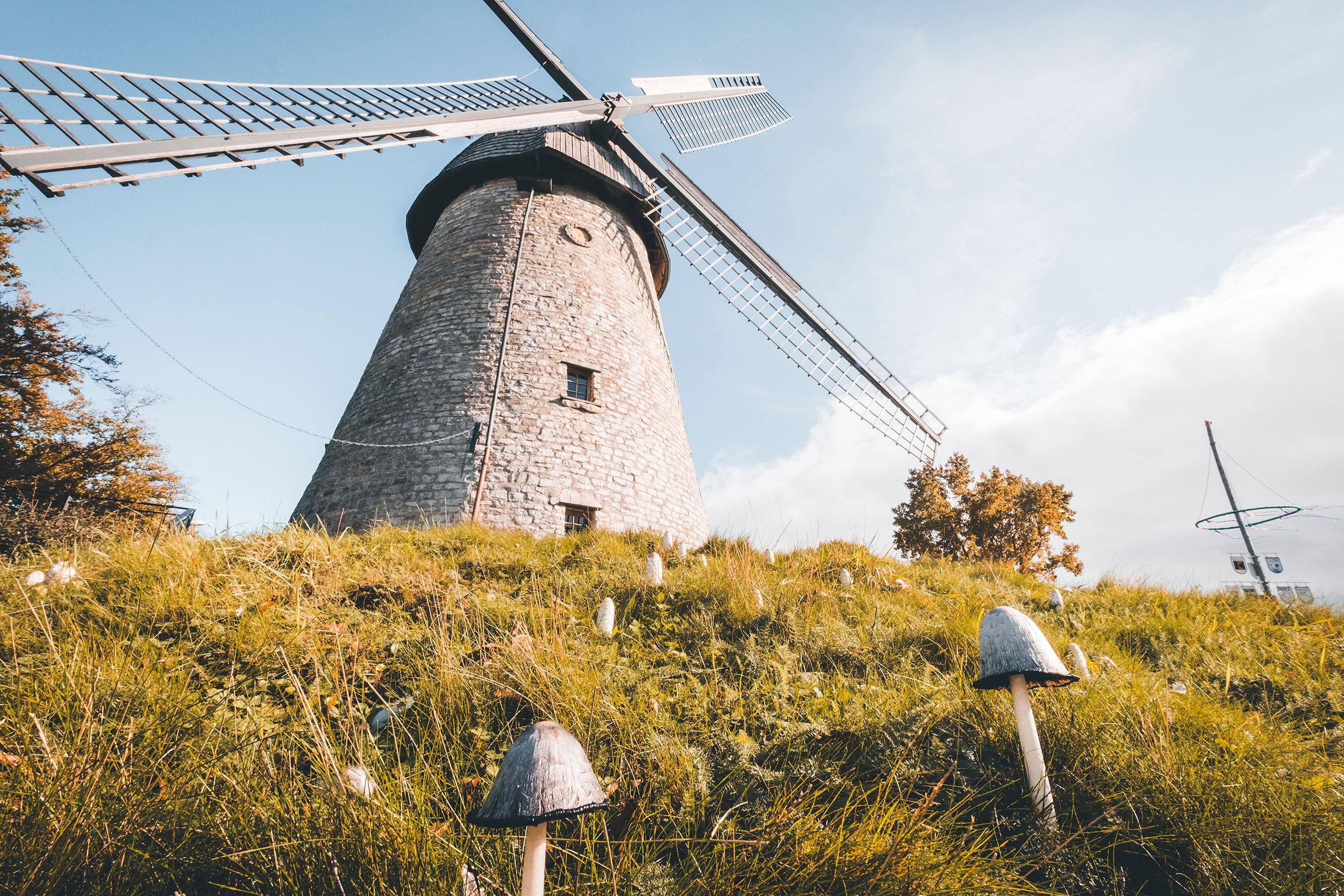 Windmühle Ennigerloh - 3-Tagestour mit dem Camper im Münsterland